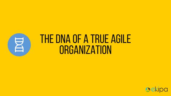 The DNA of a true agile organization